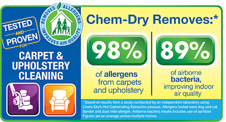 Professional Carpet Upholstery Cleaning Chem Dry